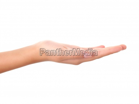 empty open hand isolated on white