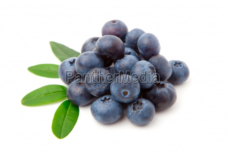 blueberries with green leaves isolated on
