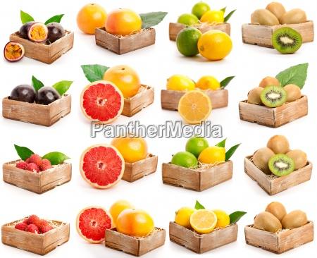 red grapefruits lychees kiwi passion fruit