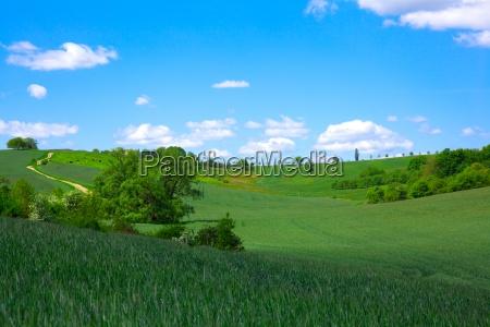 gruenen feld auf blauem himmel