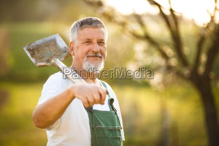 portraet einer schoenen aelterer mann in