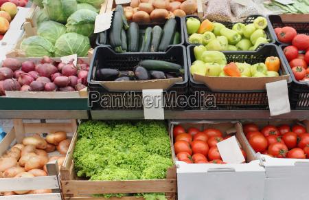 essen nahrungsmittel lebensmittel nahrung roh verschlaege