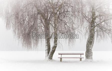einsame bank im winter