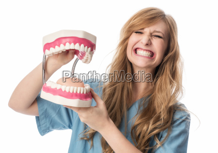 dentist showing teeth model