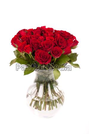rote rosen in glasvase