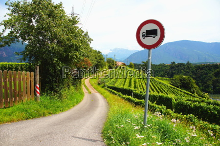 road and vineyard near missian in