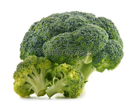 frische bio brokkoli isoliert auf weiss