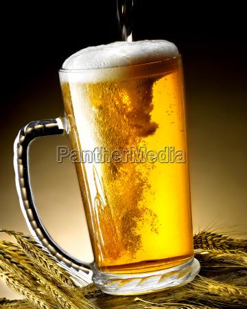krug bier