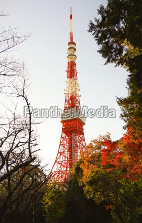 baum baustil architektur baukunst japan tokyo