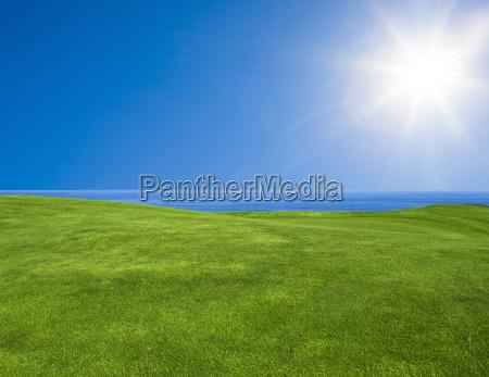 schoene gruene landschaft