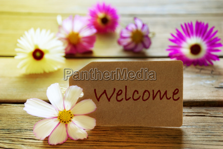sunny label with text welcome you