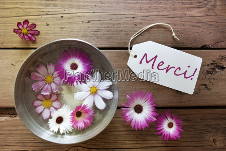 silver bowl with cosmea blossoms with