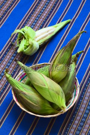 white corn called choclo peruvian or