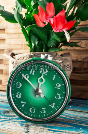 symbol des fruehlings gruene uhr und