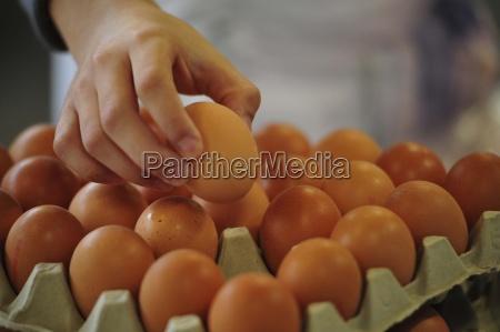 ei eier nahrung essen ernahrung gesundheit