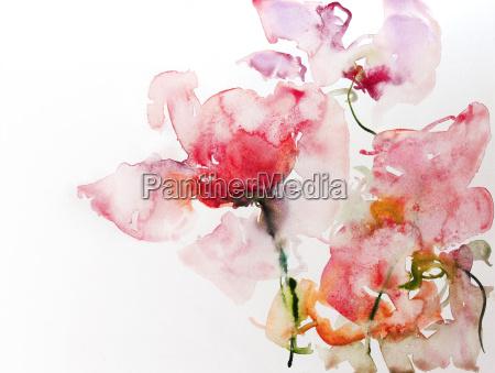 roses watercolor paper