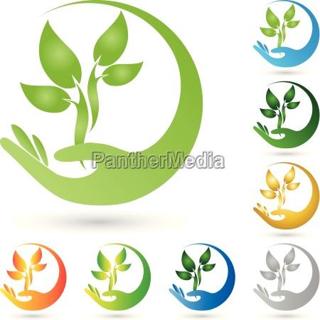 logo pflanze blaetter hand heilpraktiker