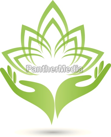 logo two hands leaves flower naturopaths