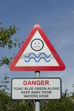 blau gruen gruenes gruener gruene algen