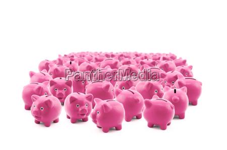 grosse gruppe von rosa schweinchen banken