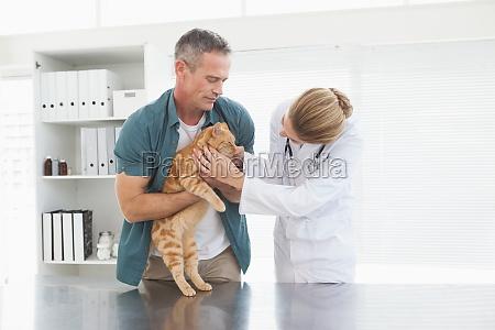besitzer haelt seine katze als tierarzt