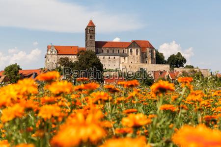 blick zum quedlinburger schloss und stiftskirche