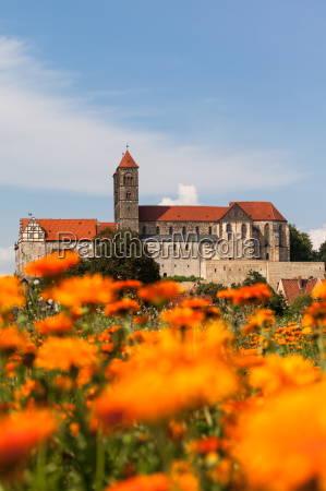 view to quedlinburg castle and stiftskirche