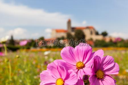 looking for quedlinburger castle and collegiate