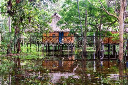 jungle bungalows