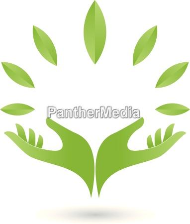 logo zwei haende blaetter heilpraktiker