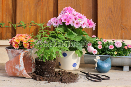 repotting planting table with utensils