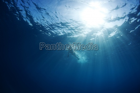 blick auf das wasser eines schwimmers