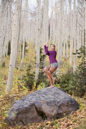 entspannung baum usa wohlfuehlen outdoor freiluft