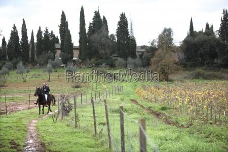 italienische winzer zu pferd