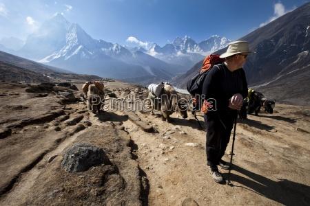 ein, trekker, in, nepal, blickt, über - 13976167