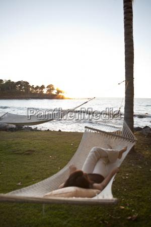entspannung baum sonnenuntergang sonnenlicht abendrot outdoor
