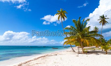strand in saona dominikanische republik