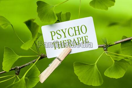 conflitto psicosi paziente terapia trauma psicoterapia