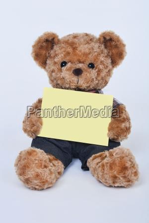 freisteller teddybaer abgeschieden isolierte unterschreiben