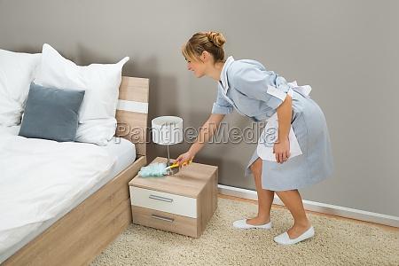 maid reinigung staub mit feder staubtuch