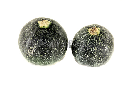 frische runde rohe zucchini