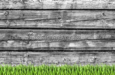 holzwand und gruene gras hintergrund