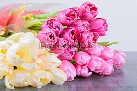 tulpen blumenstraeusse auf dem tisch