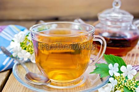 tea from flowers of viburnum on