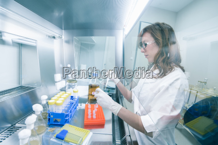 das leben wissenschaftler im labor zu