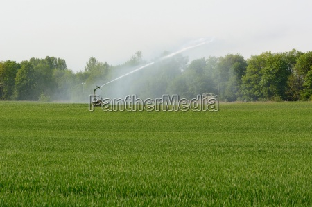 bewaesserung in der landwirtschaft