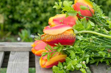 bouquet red yellow tulips flowers flowers