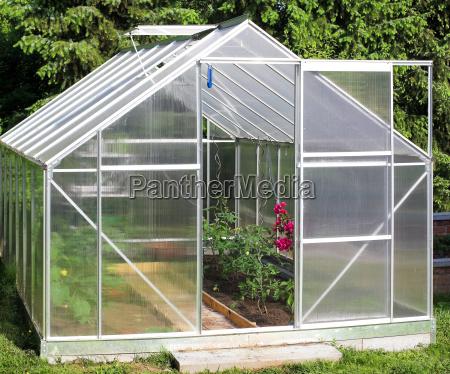 gewaechshaus pflanzen tomaten gebaeude tomatenstock blumentopf