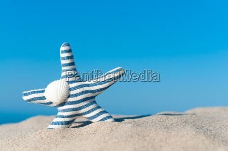 fernweh am strand strandurlaub seestern aus