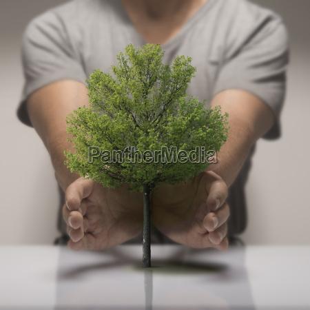 oekologiedie natur zu schuetzen